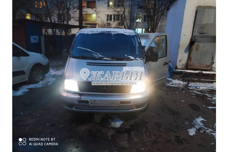 Жук Кыргызтанга